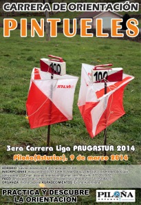 cartel_piloña2014