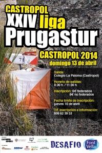 orientacioncastropolliga2014