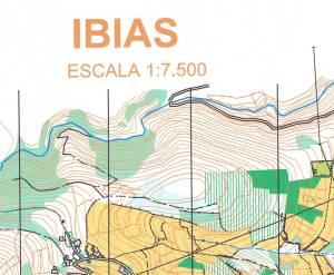 IBIAS-1