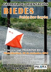 Biedes - Liga PrugAstur
