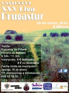 prugastur-piñera-enero2015-copia-1